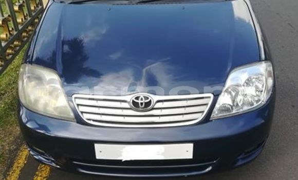 Buy Used Toyota Corolla Blue Car in Port Louis in Port Louis District