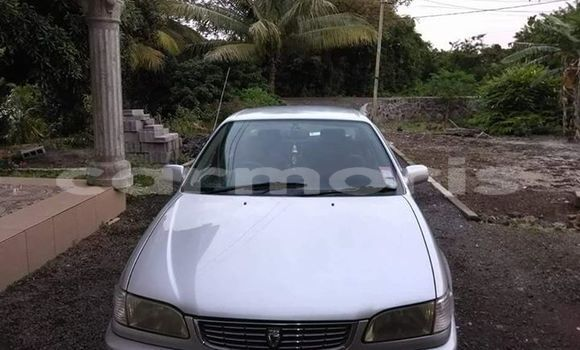 Buy Used Toyota Corolla Silver Car in Central Flacq in Flacq