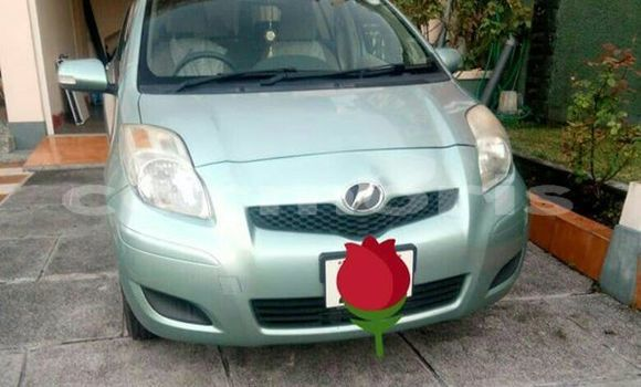 Buy Used Toyota Vitz Other Car in Port Louis in Port Louis District
