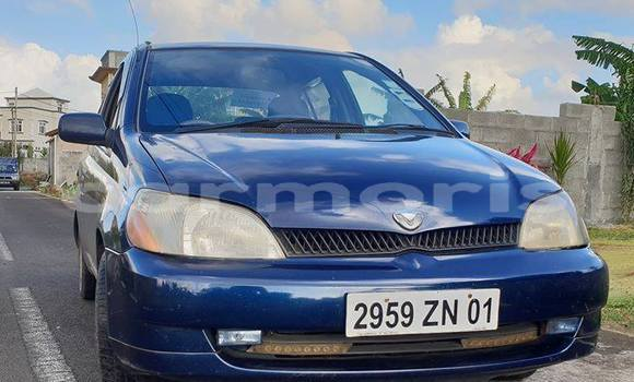 Buy Used Toyota Platz Blue Car in Central Flacq in Flacq