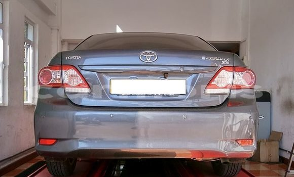 Buy Used Toyota Corolla Other Car in Moka in Moka