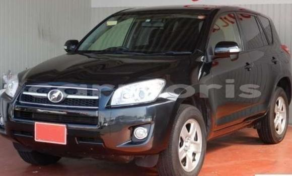 Buy Used Toyota RAV 4 Black Car in Port Louis in Port Louis District