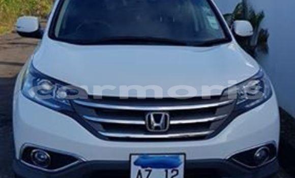 Buy Used Honda CR-V White Car in Port Louis in Port Louis District