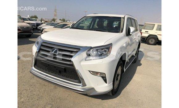 Buy Import Lexus GX White Car in Import - Dubai in Agalega Islands