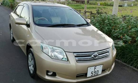 Buy Used Toyota Axio Brown Car in Curepipe in Plaines Wilhems District