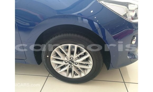 Buy Import Kia Rio Blue Car in Import - Dubai in Agalega Islands