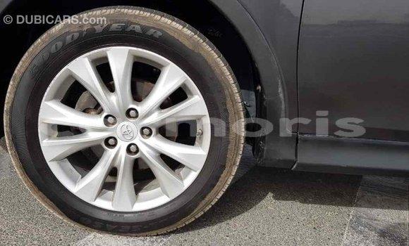 Buy Import Toyota RAV4 Other Car in Import - Dubai in Agalega Islands