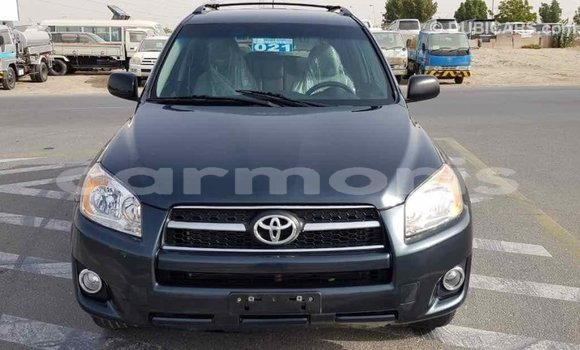 Buy Import Toyota RAV4 Green Car in Import - Dubai in Agalega Islands
