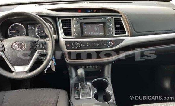 Buy Import Toyota Highlander Brown Car in Import - Dubai in Agalega Islands