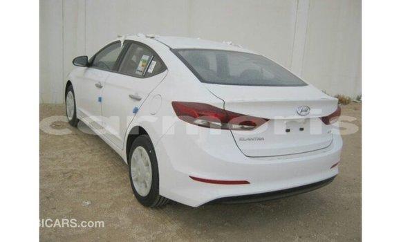 Buy Import Hyundai Elantra White Car in Import - Dubai in Agalega Islands