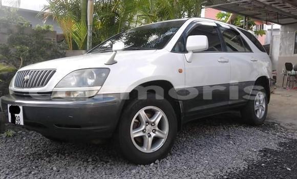 Buy Used Toyota Harrier White Car in Port Louis in Port Louis District