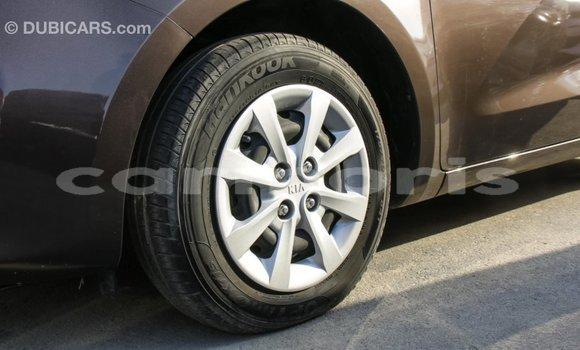 Buy Import Kia Rio Brown Car in Import - Dubai in Agalega Islands