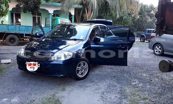 Buy Used Toyota Corolla Blue Car in Centre de Flacq in Flacq District