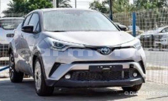 Buy Import Toyota C-HR Other Car in Import - Dubai in Agalega Islands
