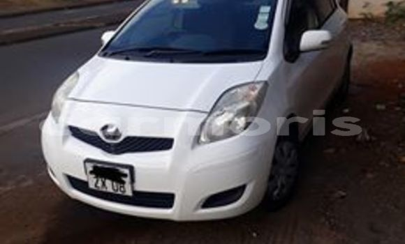 Buy Used Toyota Vitz White Car in Port Louis in Port Louis District