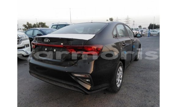Buy Import Kia Cerato Black Car in Import - Dubai in Agalega Islands
